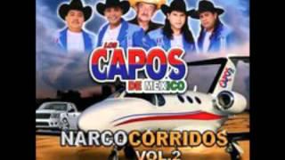 ah como hay gente pendeja los capos de méxico 2016