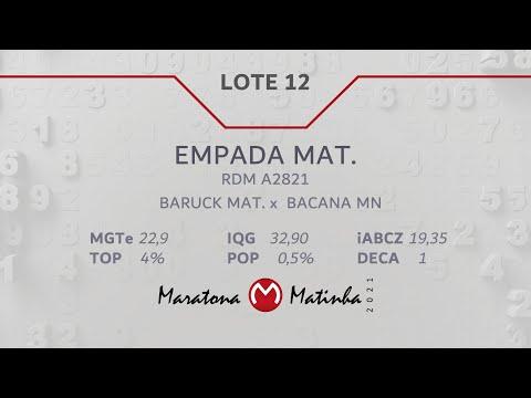 LOTE 12  Maratona Matinha