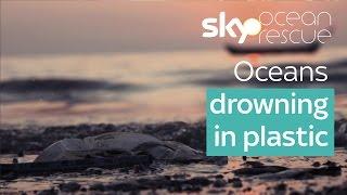 Oceans drowning in plastic | #OceanRescue