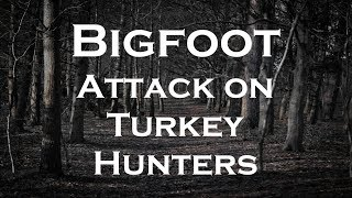 A Bigfoot Attacked Hunters in West Virginia
