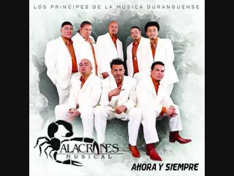 Alacranes Musical-Por Amarte Asi
