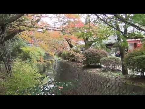 Japan - Day 18 - Kyoto (Shrines, Nishiki market, Downtown, Philosophy's path, Pontocho)