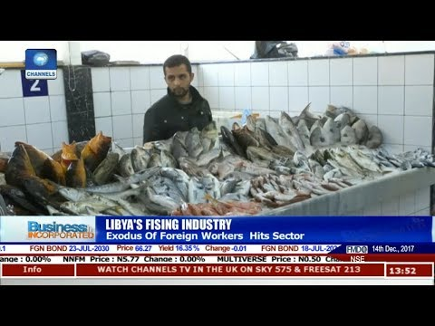 Exodus Of Foreign Workers Hits Libya's Fishing Sector |Business Incorporated|