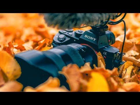 Vibrant Autumn Photoshoot + Photoshop idea.