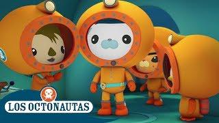 Los Octonautas Oficial en Español - Montando en peces vela
