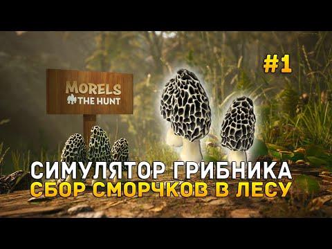 Симулятор грибника. Сбор Сморчков в лесу - Morels: The Hunt #1 (Первый Взгляд)