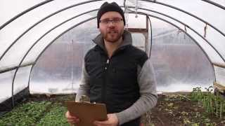 Ask The Urban Farmer -- HOW TO START UP your own backyard urban farm