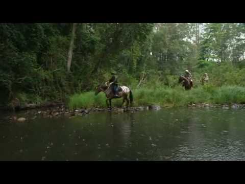 I'm A Celebrity Get Me Out Of Here 2009 E1 P3