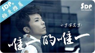 小宇(宋念宇) - 唯一的唯一「高音質 x 動態歌詞 Lyrics」♪ SDPMusic ♪ thumbnail