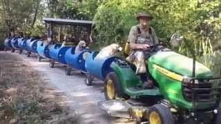 Retired railroad worker and his chew-chew train for dogs