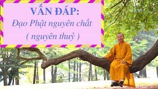 Vấn đáp: Đạo Phật nguyên chất ( nguyên thuỷ ) | Thích Nhật Từ