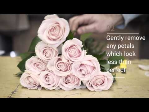 How to make your flowers last longer - with McQueens
