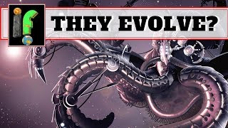 Evolution 'IF' These animals evolve socities?