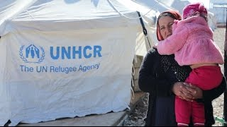 Kurdistan Region of Iraq: Syrian refugee family moves back to camp