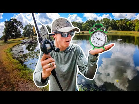 1 HOUR Pond Bank Fishing Challenge (How To Find Fish QUICK)