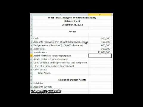 Non Profit Balance Sheet