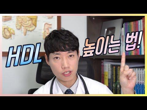 HDL 높이는 법 l 이상지질혈증 l 저HDL-콜레스테롤혈증 l 닥터딩요
