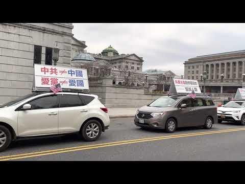 """11月22日""""打倒中共恶魔""""车队宾州费城游行(直播1) 从宾州哈里斯堡去费城的途中 经过哈里斯堡议会大厦前Commonwealth Ave"""