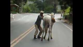 Bêbado tenta subir no cavalo