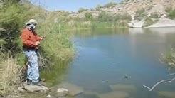 FLY FISHING DOJO - PANFISH PARTY - CANYON LAKE, AZ