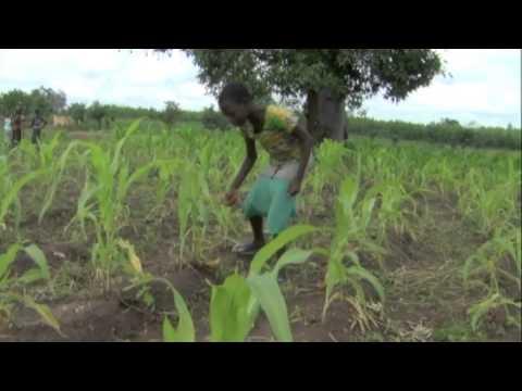 """Séquence du documentaire """"la traite des enfants"""" Togo"""