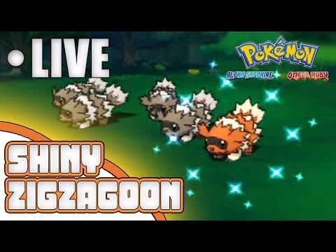 NO WHY!!! Live Reaction Shiny Zigzagoon after 385 Horde Encounters! Pokemon ORAS!