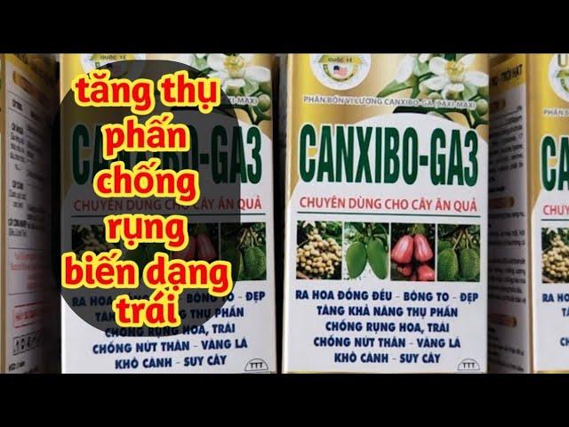 Canxi Bo GA3 Chuyên Dùng Cho Cây Ăn Trái