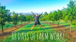 Farm work and Fun times | Backpacking Australia ✈︎ Coffs Harbour