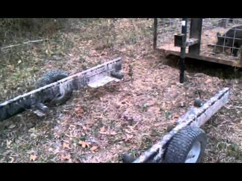 Home Made Hog Trap And Trailer Combo In Action
