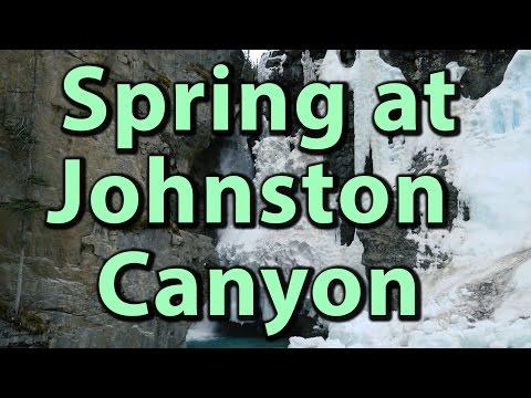 Spring at Johnston Canyon in Banff National Park (4K) | Journey Alberta