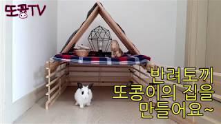 [애완토끼] 또콩이의 집을 만들어요 (또콩TV)