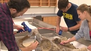 Raw: Ice Age Mastodon Skeleton Found in Mich.