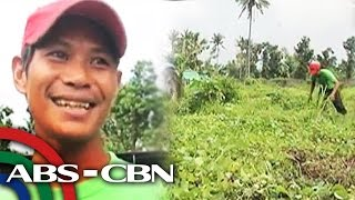 Farmer gets hectare of land for Christmas