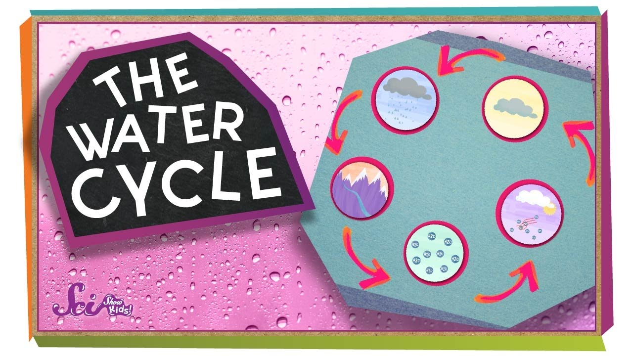 hight resolution of where does water come from ecology for kids