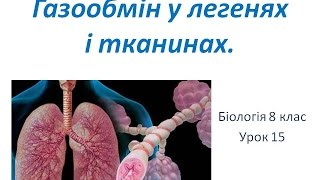 Газообмін у легенях і тканинах