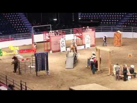 Extreme Trail Curse -1,  Calgary Stampede Agriculture