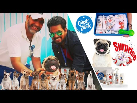 best-dogs-products-review-and-unboxing-|-episode-01-|-captain-zack-|-pet-groom-box-|-pugs