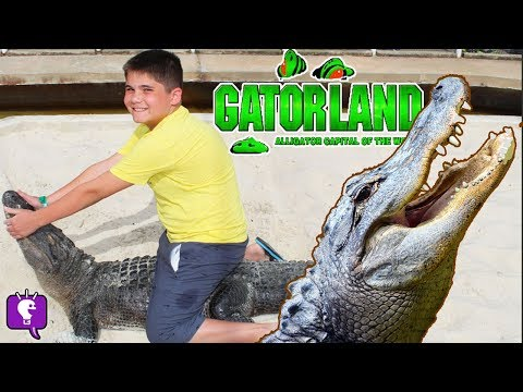 We Feed Hot Dogs to CROCODILES at GatorLand! Giant Tortoises in Florida Trip with HobbyKids