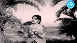 Komma Meeda Koyilamma Song - Thalli Prema Movie Songs -  NTR - Savitri - Kanchana - Relangi