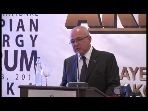 CASPIAN ENERGY FORUM BAKU 2014 SESSION 1