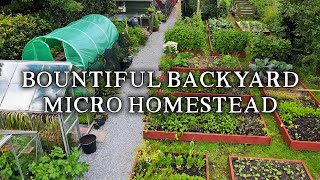 Amazing Permaculture Raised Bed Vegetable Garden | Combining No Dig Gardening with Poultry