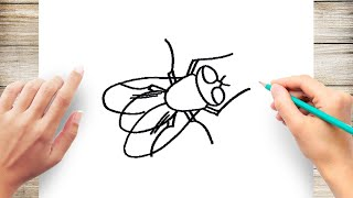 How to Draw a Fly Step by Step for Kids