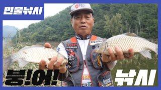 단양 우화교 붕어낚시 - Carp Fishing / フ…
