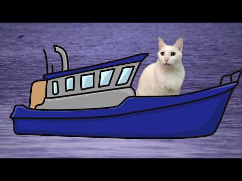 Row Row Row Your Boat  - Cats Version - Singing Cats