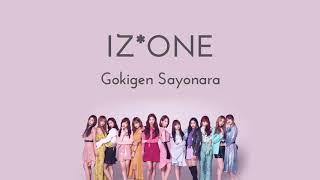 IZONE - Gokigen Sayonara 1 HOUR LOOP