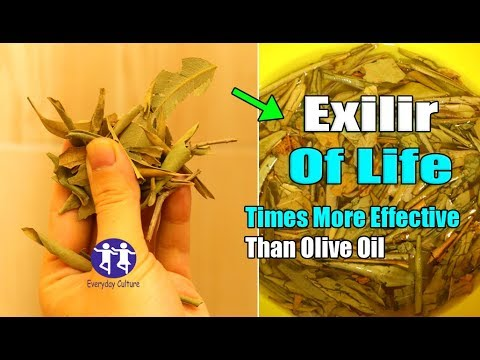 omg! These leaves are 1000 times more powerful than olive oil! And many people throw them away
