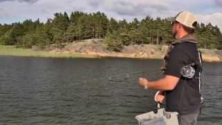 Flugfiske efter gädda med Niklaus Bauer - Allt du behöver veta!