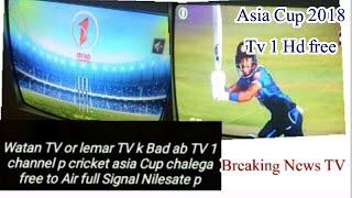 Watan Tv Frequency Nilesat