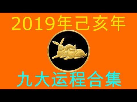 2019年己亥年九大运程大合集:肖兔者