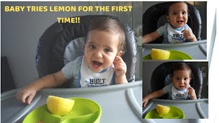 BABY VS LEMON!!!!! **WHOEVER MAKES A FACE FIRST LOSES*